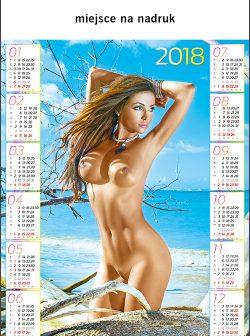 http://www.drukarnia-dagraf.pl/wp-content/uploads/2016/03/a26-250x336.jpg