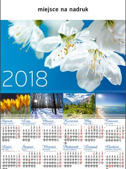 http://www.drukarnia-dagraf.pl/wp-content/uploads/2016/03/a28-250x336.jpg